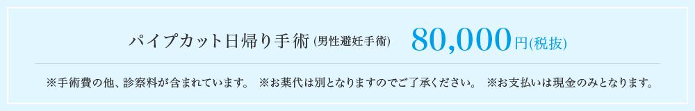 パイプカット日帰り手術(男性避妊手術)80,000円(税抜)